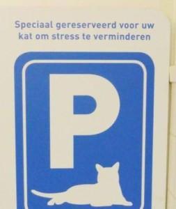 Dierenkliniek_de_Paltrok_kat_stress_verminderen